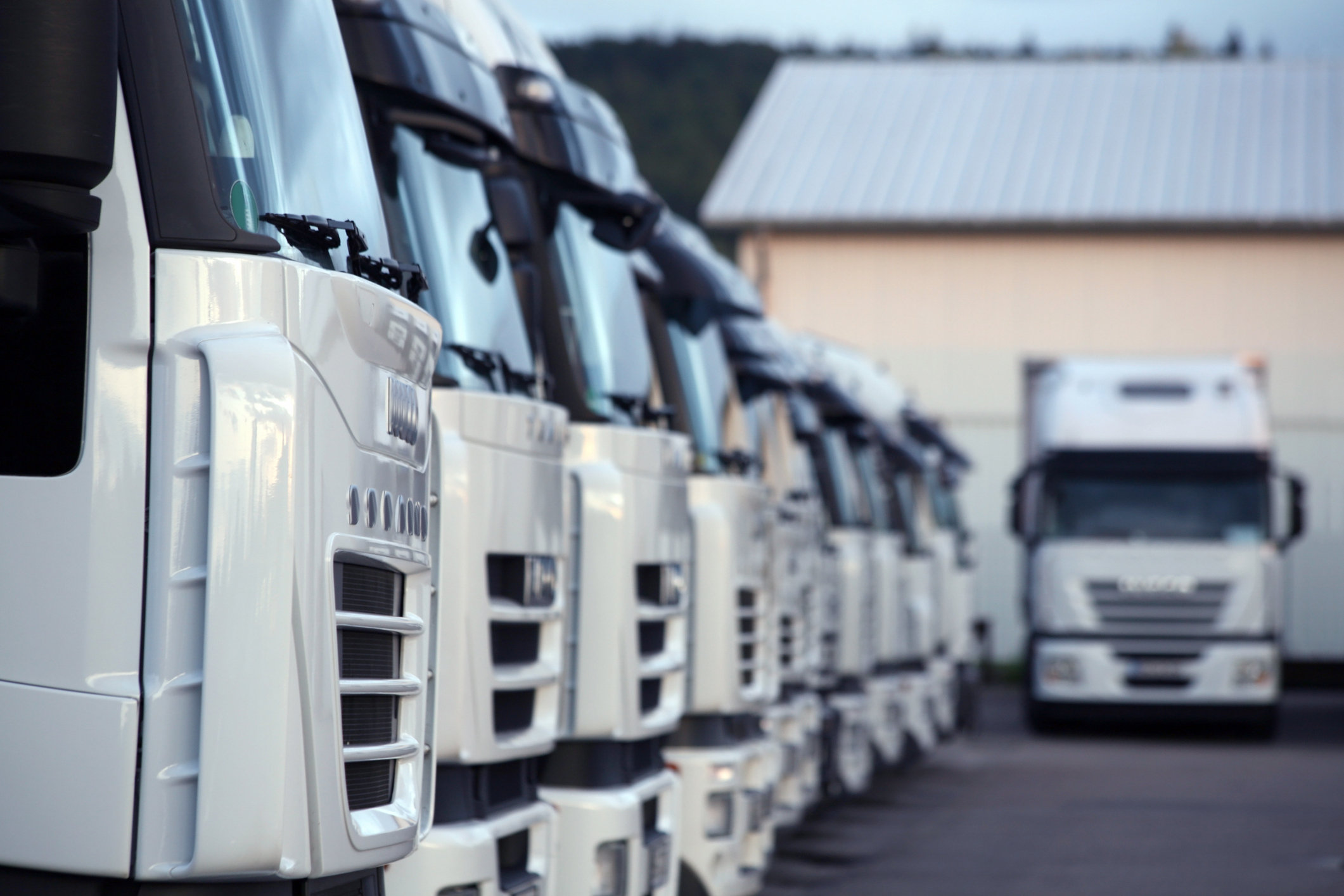 Fleetness Fleet Management