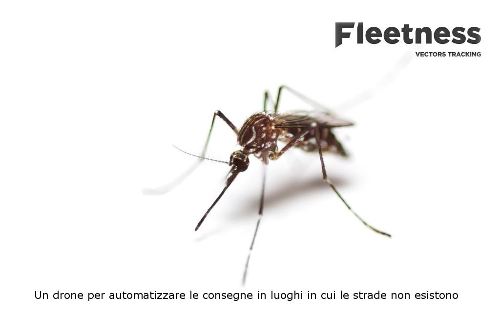 Fleetness: quale animale è il più pericoloso per l'uomo?